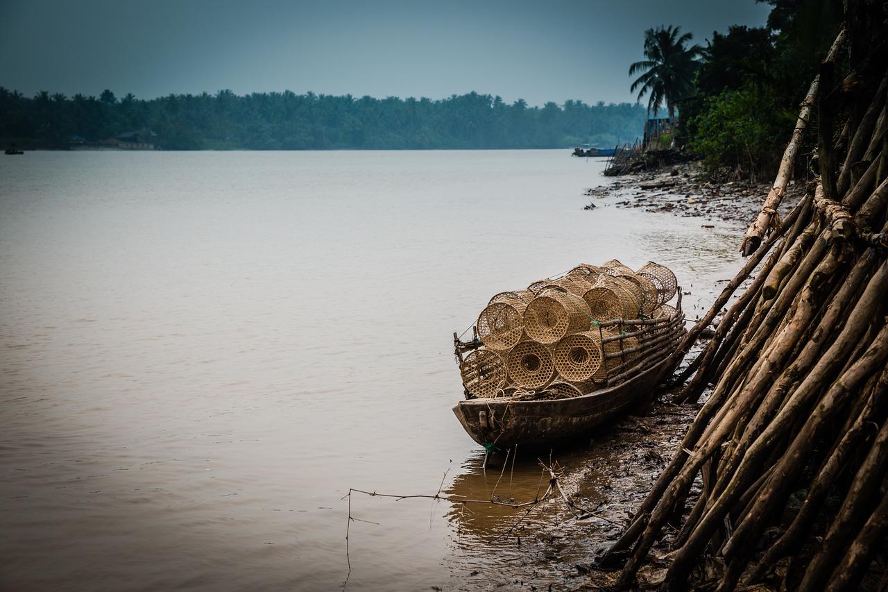 Fish Traps | Kênh Giao Hòa River, Vietnam
