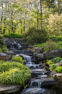 page 54,The Rock Garden's historic cascade and stream were restored in 2014 to preserve their rustic beauty and conserve water.