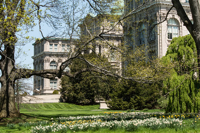 page 47,The Narcissus Collection emerges through emerald lawns adjacent to the Library building.