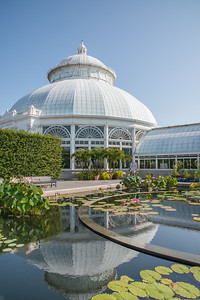 109, A concrete ring within the Tropical Pool marks the location where giant Amazon water lilies are planted.