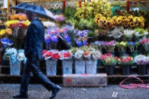 _Christopher-Briscoe-rain-nyc-alone-web1885