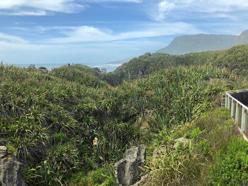 Punakaiki Pancake Rock West Coast New Zealand