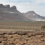Arid mountains and agriculture