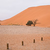 Sossuvlei. People on top of Dune 45.