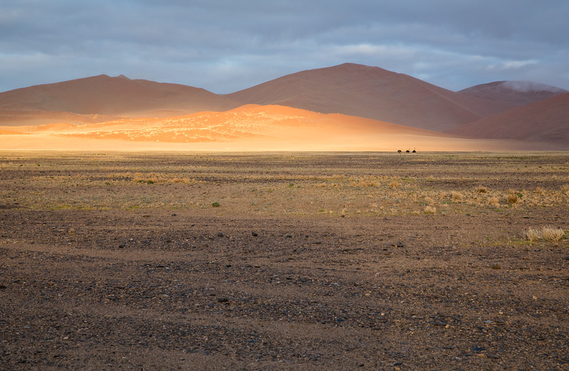 Sossuvlei - a unique area in the southern Namib Desert