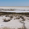 Wide expanse of desert with salt pan in Etosha National Park