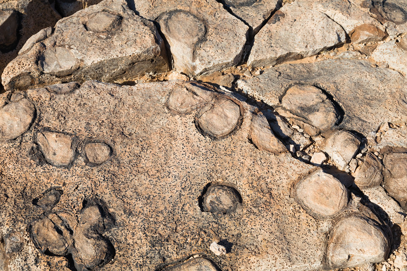 Stromatolites in Fish River Canyon, Namibia