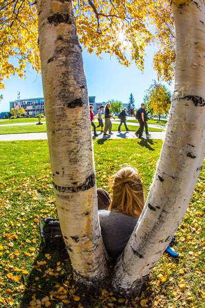 """Emily Russell, a new graduate student in Northern Studies, takes advantage of nice September weather on the Fairbanks campus.  <div class=""""ss-paypal-button"""">Filename: LIF-12-3540-16.jpg</div><div class=""""ss-paypal-button-end"""" style=""""""""></div>"""