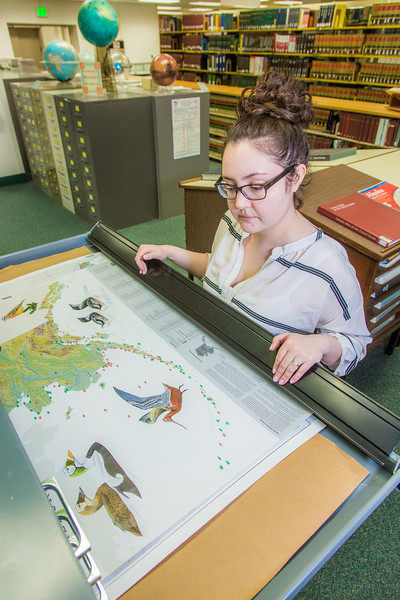 """Liz Humrickhouse, assistant professor of library science, looks through various pieces in the map collection on the fifth floor of the Rasmuson Library.  <div class=""""ss-paypal-button"""">Filename: LIF-14-4045-71.jpg</div><div class=""""ss-paypal-button-end"""" style=""""""""></div>"""