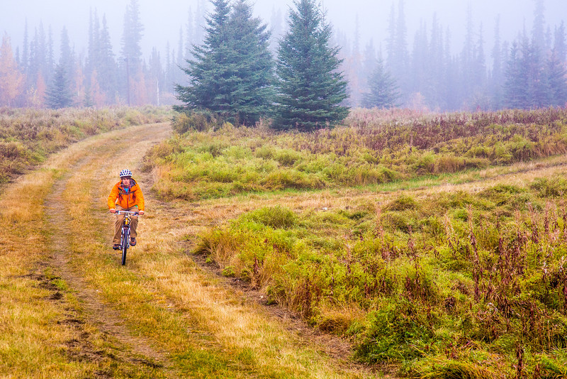 """Mechanical engineering major Adam McCombs rides his bike through the potato field towards campus on a recent foggy morning.  <div class=""""ss-paypal-button"""">Filename: LIF-12-3556-013.jpg</div><div class=""""ss-paypal-button-end"""" style=""""""""></div>"""