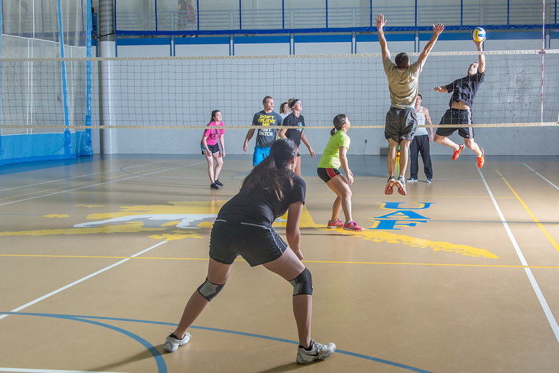 "Intramural volleyball action on a Tuesday night at the Student Recreation Center.  <div class=""ss-paypal-button"">Filename: LIF-14-4111-236.jpg</div><div class=""ss-paypal-button-end"" style=""""></div>"
