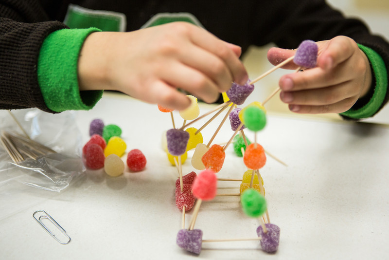 """""""Young engineers"""" build gumdrop bridges withstanding the weight of marbles during the during the E-Week open house in the Duckering Building.  <div class=""""ss-paypal-button"""">Filename: LIF-13-3741-49.jpg</div><div class=""""ss-paypal-button-end"""" style=""""""""></div>"""