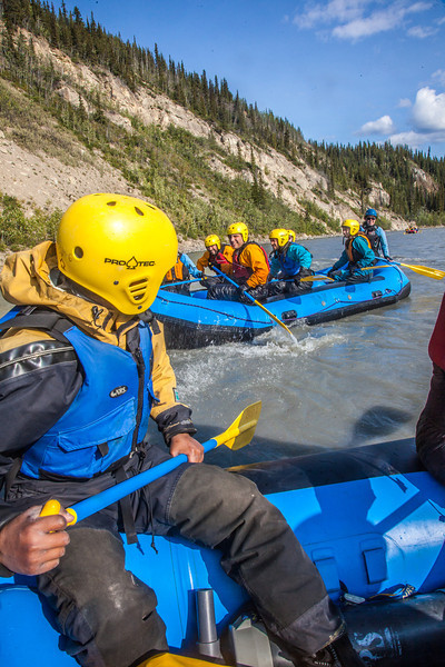 "Participants in a UAF Outdoor Adventures day-long raft trip paddle down the Nenana River.  <div class=""ss-paypal-button"">Filename: OUT-12-3492-183.jpg</div><div class=""ss-paypal-button-end"" style=""""></div>"