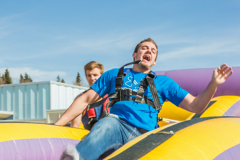 "Matt Deatherage gets yanked back to the starting point during his turn in the harness pull, one of many attractions brought to campus during UAF SpringFest Field Day on April 28.  <div class=""ss-paypal-button"">Filename: LIF-14-4168-82.jpg</div><div class=""ss-paypal-button-end""></div>"