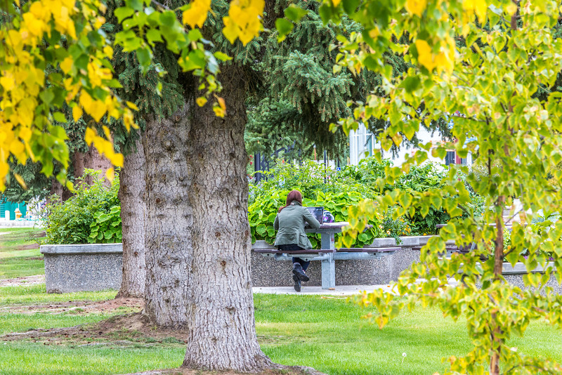 """A graduate student sits with her laptop in front of the Arctic Health Research Building on the first day of class of the 2013 fall semester.  <div class=""""ss-paypal-button"""">Filename: LIF-13-3928-132.jpg</div><div class=""""ss-paypal-button-end"""" style=""""""""></div>"""
