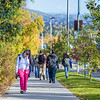 "Students make their way along Yukon Drive on a nice fall afternoon on the Fairbanks campus.  <div class=""ss-paypal-button"">Filename: LIF-12-3544-179.jpg</div><div class=""ss-paypal-button-end"" style=""""></div>"