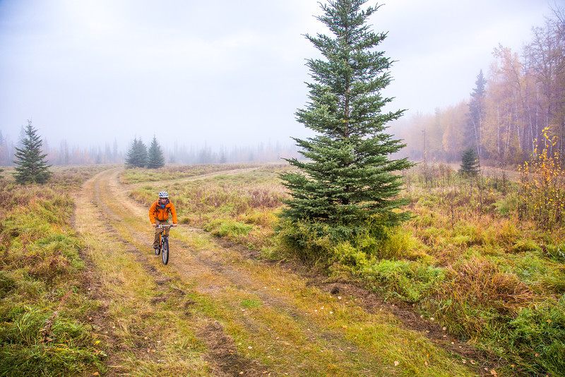 """Mechanical engineering major Adam McCombs rides his bike through the potato field towards campus on a recent foggy morning.  <div class=""""ss-paypal-button"""">Filename: LIF-12-3556-015.jpg</div><div class=""""ss-paypal-button-end"""" style=""""""""></div>"""