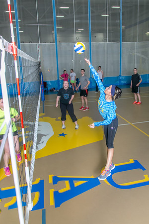 Intramural volleyball action on a Tuesday night at the Student Recreation Center.  Filename: LIF-14-4111-263.jpg