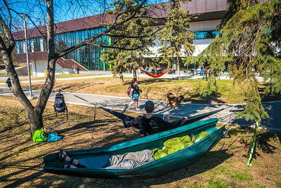 Students enjoy some spring sunshine and warm temperatures in late April on the Fairbanks campus.  Filename: LIF-16-4877-08.jpg