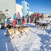 "A long line of folks wanting a dog sled ride formed in front of the SRC  Saturday, Feb. 22. The mushing event was another part of UAF's 2014 Winter Carnival.  <div class=""ss-paypal-button"">Filename: LIF-14-4089-61.jpg</div><div class=""ss-paypal-button-end"" style=""""></div>"