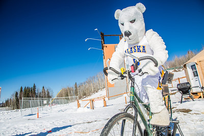 Photos from the inaugural cross country bicycle race during the 2013 Springfest on the Fairbanks campus.  Filename: LIF-13-3804-20.jpg