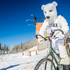 "Photos from the inaugural cross country bicycle race during the 2013 Springfest on the Fairbanks campus.  <div class=""ss-paypal-button"">Filename: LIF-13-3804-20.jpg</div><div class=""ss-paypal-button-end"" style=""""></div>"