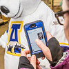 "The UAF mascot tries on a new jersey in the UAF Bookstore in Constitution Hall.  <div class=""ss-paypal-button"">Filename: LIF-14-4101-49.jpg</div><div class=""ss-paypal-button-end"" style=""""></div>"