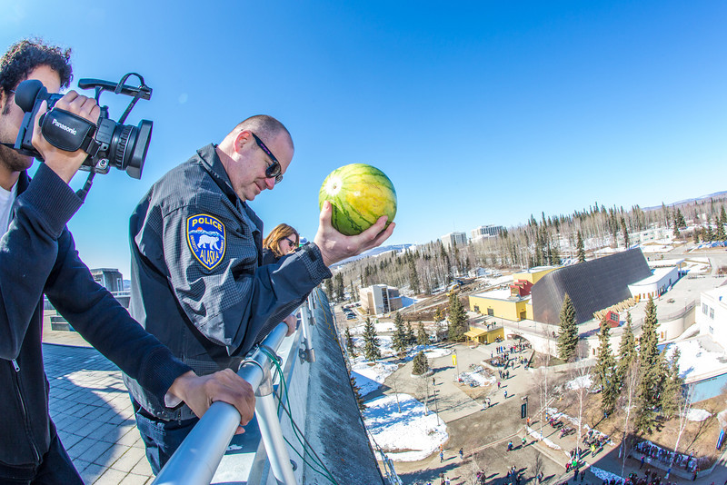 """UAF Police Chief Sean McGee drops a rotten watermelon from high atop the Gruening Building to officially launch the beginning of Springfest 2013 on the Fairbanks campus.  <div class=""""ss-paypal-button"""">Filename: LIF-13-3801-15.jpg</div><div class=""""ss-paypal-button-end"""" style=""""""""></div>"""