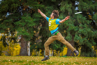 Mechanical engineering major Adam McCombs makes a leaping attempt at a catch during a bout of utlimate frisbee in the field near the University of Alaska's Museum of the North on a fall afternoon.  Filename: LIF-12-3557-079.jpg