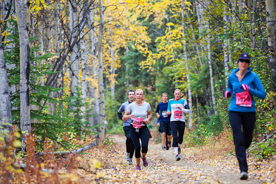 Runners push forward after descending Ester Dome's chute at the last leg of the 50th Annual Equinox Marathon on September 15, 2012 before reaching Henderson Road.  Filename: LIF-12-3553-161.jpg
