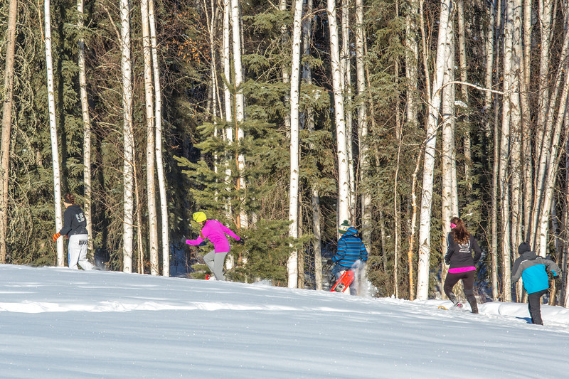 """Participants compete in the second annual Troth Yeddha' Park Snowshoe Scramble Saturday, March 1, to help raise awareness for the proposed park to help celebrate Alaska's Native culture.  <div class=""""ss-paypal-button"""">Filename: LIF-14-4079-27.jpg</div><div class=""""ss-paypal-button-end"""" style=""""""""></div>"""
