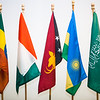 "Flags, from left, Ethiopia, Côte d'Ivoire, Papua New Guinea, Rwanda and Saudi Arabia were dedicated at a ceremony welcoming new students from those countries at the Wood Center from the UAF International Programs & Initiatives.  <div class=""ss-paypal-button"">Filename: LIF-12-3655-62.jpg</div><div class=""ss-paypal-button-end"" style=""""></div>"