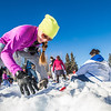 "Participants in the second annual Troth Yeddha' Snowshoe Scramble dig for prizes buried in the snow after the race Saturday, March 1 by the Reichardt Building. The event hopes to build awarness for a proposed park to help celebrate Alaska's Native culture.  <div class=""ss-paypal-button"">Filename: LIF-14-4079-114.jpg</div><div class=""ss-paypal-button-end""></div>"