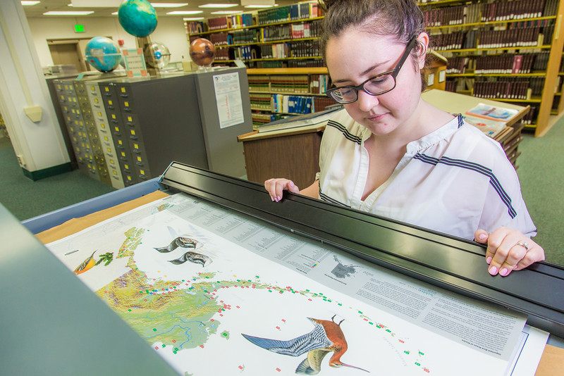 """Liz Humrickhouse, assistant professor of library science, looks through various pieces in the map collection on the fifth floor of the Rasmuson Library.  <div class=""""ss-paypal-button"""">Filename: LIF-14-4045-67.jpg</div><div class=""""ss-paypal-button-end"""" style=""""""""></div>"""