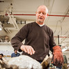 "Ceramics professor Jim Brashear takes out another clay-covered turkey, which was baked in a kiln during the annual Thanksgiving gathering at the ceramics department.  <div class=""ss-paypal-button"">Filename: LIF-12-3660-61.jpg</div><div class=""ss-paypal-button-end"" style=""""></div>"