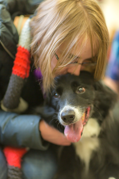"Music major Elsbeth Cheyne spends some quality time with a happy border collie during Dogs in the Library day. The event is offered during finals week to provide students with a bit of stress relief.  <div class=""ss-paypal-button"">Filename: LIF-13-4023-40.jpg</div><div class=""ss-paypal-button-end"" style=""""></div>"