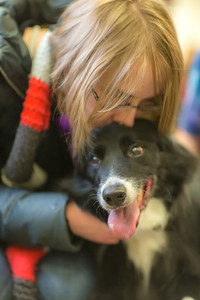 Music major Elsbeth Cheyne spends some quality time with a happy border collie during Dogs in the Library day. The event is offered during finals week to provide students with a bit of stress relief.  Filename: LIF-13-4023-40.jpg