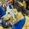 "Alexandria Charles, a junior biology major from California, spends some quality time with Yukon the golden retriever on Dogs in the Library day. The event is offered during finals week to provide students with a bit of stress relief.  <div class=""ss-paypal-button"">Filename: LIF-13-4023-82.jpg</div><div class=""ss-paypal-button-end""></div>"