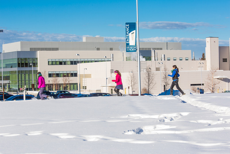 """Participants in the second annual Troth Yeddha' Park Snowshoe Scramble make their way towards the museum Saturday, March 1 to help raise awareness for the proposed park to help celebrate Alaska's Native culture.  <div class=""""ss-paypal-button"""">Filename: LIF-14-4079-46.jpg</div><div class=""""ss-paypal-button-end"""" style=""""""""></div>"""