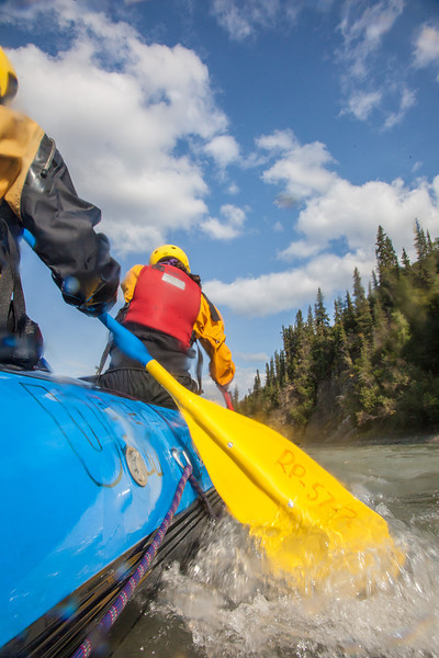 "Participants in a UAF Outdoor Adventures day-long raft trip paddle down the Nenana River.  <div class=""ss-paypal-button"">Filename: OUT-12-3492-125.jpg</div><div class=""ss-paypal-button-end"" style=""""></div>"
