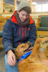 Freshman biology major Ryan Weber takes advantage of some quality time with with a new friend on Dogs in the Library day. The event is offered during finals week to provide students with a bit of stress relief.  Filename: LIF-13-4023-17.jpg