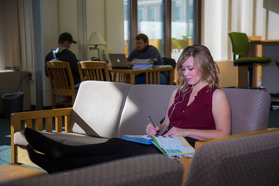 Music education major Anna Polum finds a comfortable spot to study in the Rasmuson Library.  Filename: LIF-13-3950-63.jpg