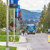 "Pedestrians walk up and down Tanana Loop on the first day of the 2013 fall semester.  <div class=""ss-paypal-button"">Filename: LIF-13-3928-249.jpg</div><div class=""ss-paypal-button-end"" style=""""></div>"