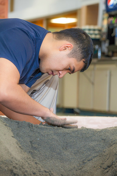 """Luis Arauz participated in a promotional sand castle building competition during the spring semester in the Lola Tilly Commons.  <div class=""""ss-paypal-button"""">Filename: LIF-12-3329-20.jpg</div><div class=""""ss-paypal-button-end"""" style=""""""""></div>"""