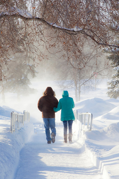 "A couple make their way to the Commons while brisk winds created snow drifts during a heavy February snowfall on the Fairbanks campus.  <div class=""ss-paypal-button"">Filename: LIF-11-2992-012.jpg</div><div class=""ss-paypal-button-end"" style=""""></div>"