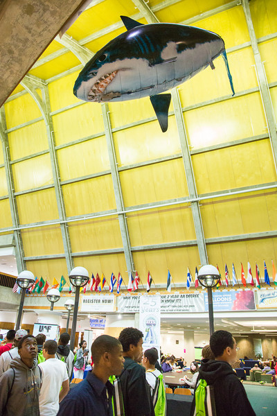 """A remote-controlled helium-filled great white shark was seen patrolling the open air inside Wood Center recently.  <div class=""""ss-paypal-button"""">Filename: LIF-12-3555-23.jpg</div><div class=""""ss-paypal-button-end"""" style=""""""""></div>"""