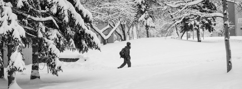 """UAF Campus received at least eleven inches of snow during finals week on Dec. 2012.  <div class=""""ss-paypal-button"""">Filename: LIF-12-3679-16.jpg</div><div class=""""ss-paypal-button-end"""" style=""""""""></div>"""