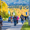 "Students make their way along Yukon Drive on a nice fall afternoon on the Fairbanks campus.  <div class=""ss-paypal-button"">Filename: LIF-12-3544-155.jpg</div><div class=""ss-paypal-button-end"" style=""""></div>"