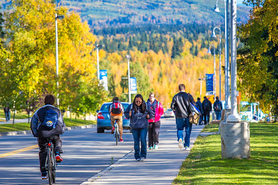 Students make their way along Yukon Drive on a nice fall afternoon on the Fairbanks campus.  Filename: LIF-12-3544-155.jpg
