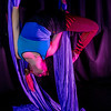 "Teal Rogers is an active member of the silk club at UAF, in which members perform acrobatic stunts hanging from silks.  <div class=""ss-paypal-button"">Filename: LIF-14-4133-105.jpg</div><div class=""ss-paypal-button-end"" style=""""></div>"